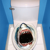 Customer sues after toilet seat prank - US news - Weird news