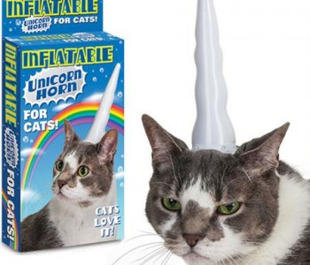 inflatable-cat-horn