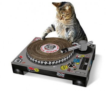 coolcat-scratch-pad