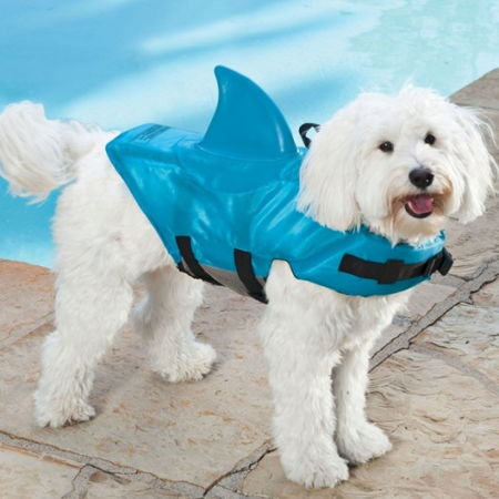 dog-floatation-vest