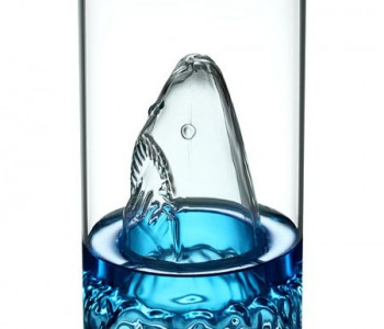 shark-glass