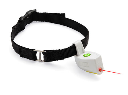 laser-collar-pet-toy