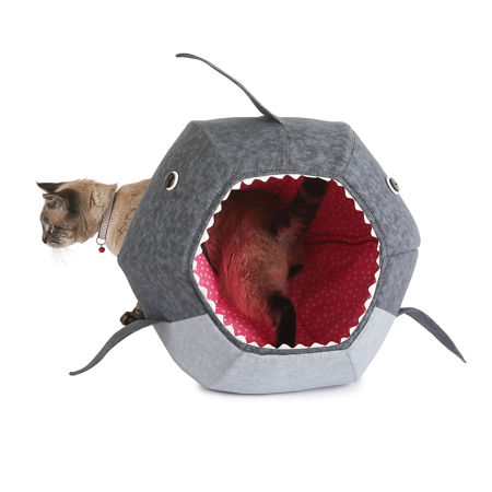 cat-shark-bed