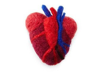anatomical-heart-needle-felt
