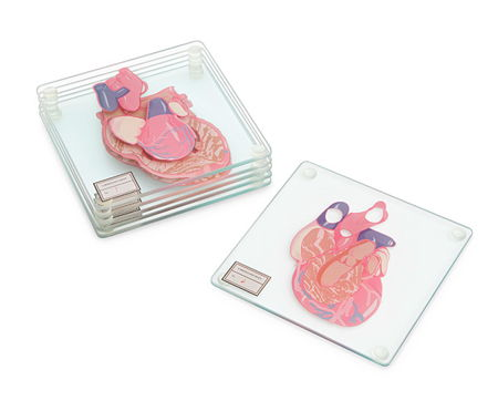 anatomic_heart_coasters