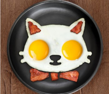 cat-egg-mold