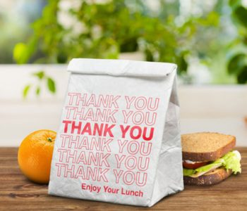 reusable-lunch-bag